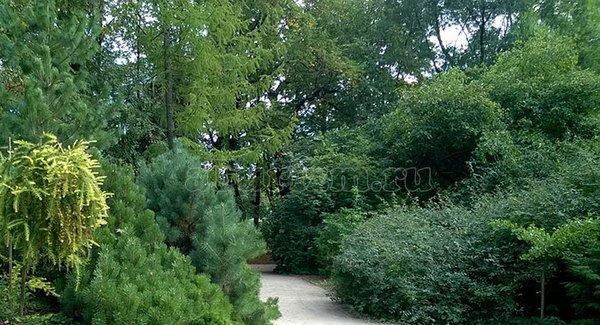 Форосский парк Ялта