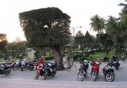 nyachang-vietnam-25