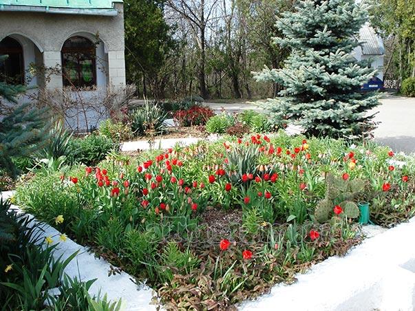 Братское мемориальное кладбище в Севастополе фото