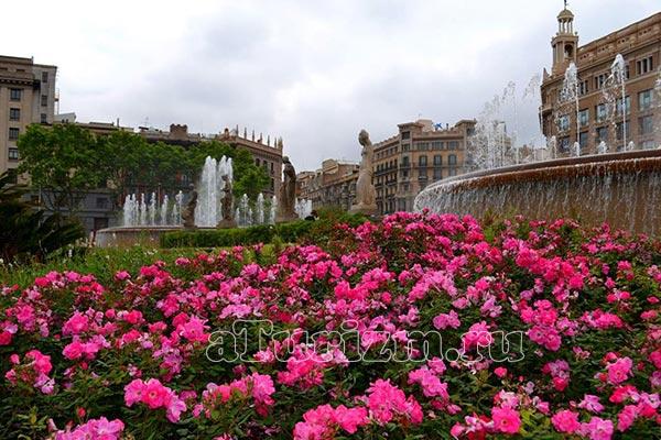 Площадь Каталонии фото
