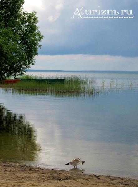 Плещеево озеро фото