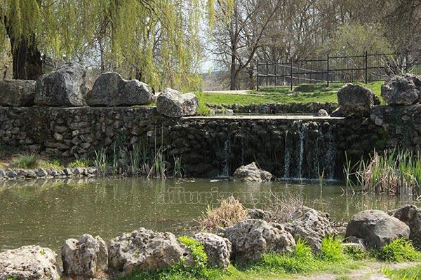 Ботанический-сад-имени-Н.В.Багрова
