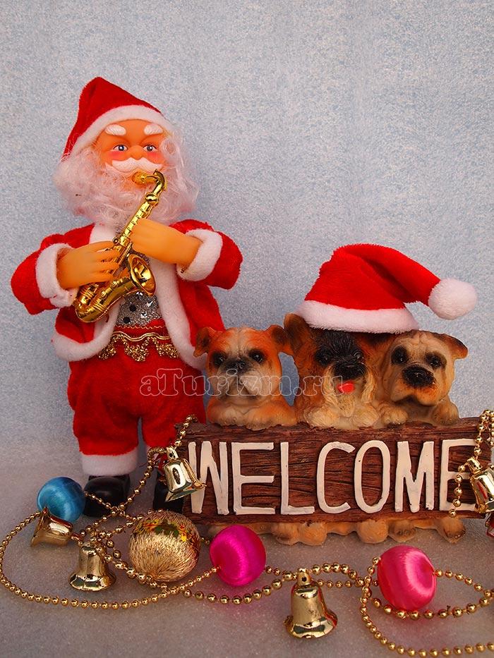Санта-Клаус фото